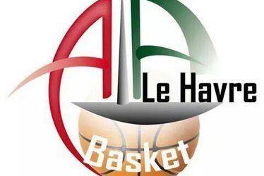 ala aplemont basket