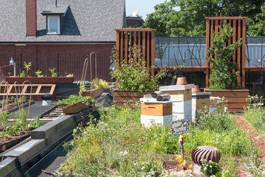 """La Ville du Havre lance un appel à projets """"Nature en ville"""""""