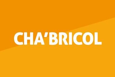 Cha'Bricol