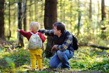 activite-famille-balade-foret.jpg
