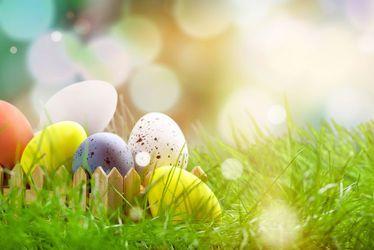 vignette, Pâques, oeufs, chasse aux oeufs