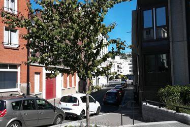 Arbre au caramel, rue Jules Ancel