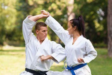 Vignette, jujitsu,karaté, kung fu