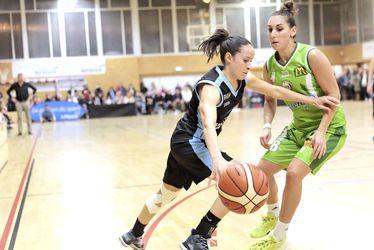 ceriklevilly_basket.jpg