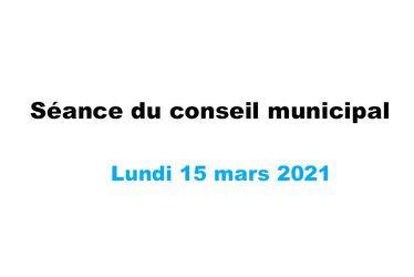 Suivez en direct la séance du Conseil municipal lundi 15 mars à partir de 18 h