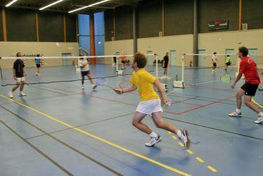 Vignette Badminton