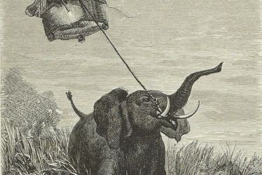 À l'aventure ! Edouard Riou, illustrateur de Jules Verne
