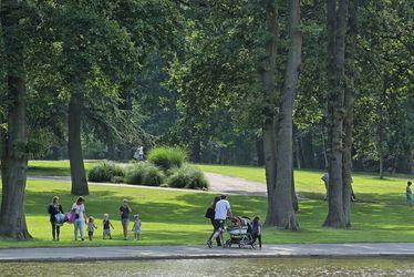Appel à candidatures - Promenade d'enfants à dos de poneys au parc forestier de Montgeon