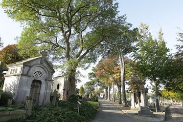 Le cimetière Sainte-Marie