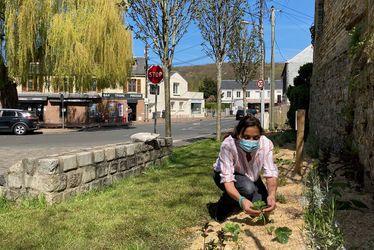 jardinpotagerrouelles-c-ville-du-havre.jpg