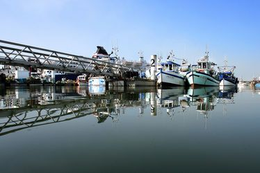 Le Port de pêche au cœur du quartier Saint-François