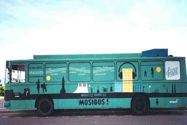 Musibus