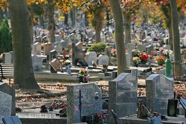 Nouvelles méthodes de gestion et d'entretien des cimetières, nouveaux outils pour simplifier vos démarches, etc.