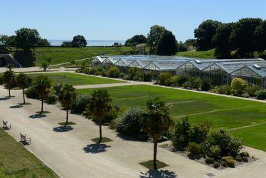 Mécénat - Nouvelle serre des Jardins Suspendus dédiée au café : faites pousser l'histoire du Havre