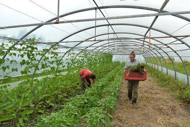 """Mélanie Briand, responsable Pôle Agriculture - Alimentation de la CODAH : """"Rurale et urbaine, l'agglomération offre un double visage"""""""