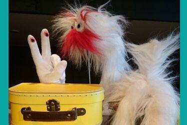 Pattes et doigts : dans la valise...