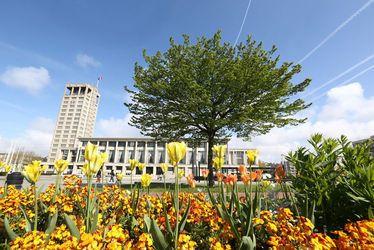 Urbanisme et espaces verts : comment paysager le centre reconstruit ?