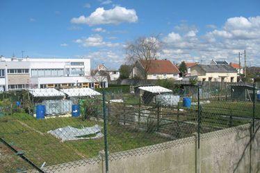 Jardins  familiaux de la Mare Rouge - Site Casaux
