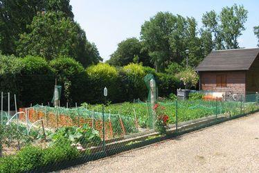 Jardins familiaux du Mont-Lecomte