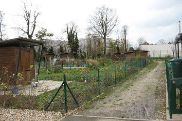 Jardins familiaux de Bléville (Saint just)