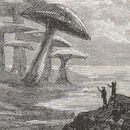 À l'aventure : voyage au pays de Jules Verne