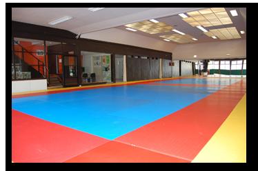 [à valider]Judo/Jujitsu