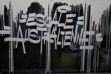 Performance graphique sur les serres « Visite des grands espaces australiens » - Are You Graffing - Escale australienne