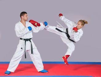 vignette taekwondo