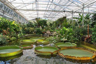 Visite des serres  - Jardins Suspendus