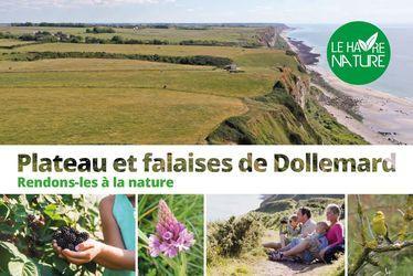 Le Havre Nature - Concertation Dollemard : Plateau et falaise de Dollemard, rendons-les à la nature !
