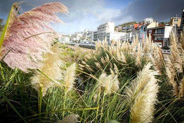 Jardins de la plage et boulevard Clémenceau