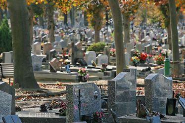 Pour rattraper le retard dû à la crise sanitaire, la Ville du Havre renforce les effectifs dédiés à l'entretien des cimetières