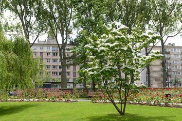 L'espace végétal du Square Saint-Roch bientôt prolongé