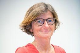 Agnès FIRMIN LE BODO, Conseiller municipal