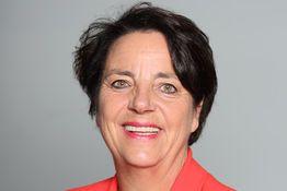 Agnès CANAYER, Conseiller municipal