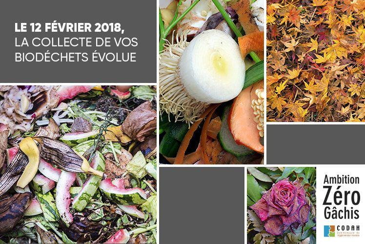 A partir du 12 février 2018, la CODAH étend la collecte des biodéchets aux pavillons du Havre-Ville haute et à Sainte-Adresse