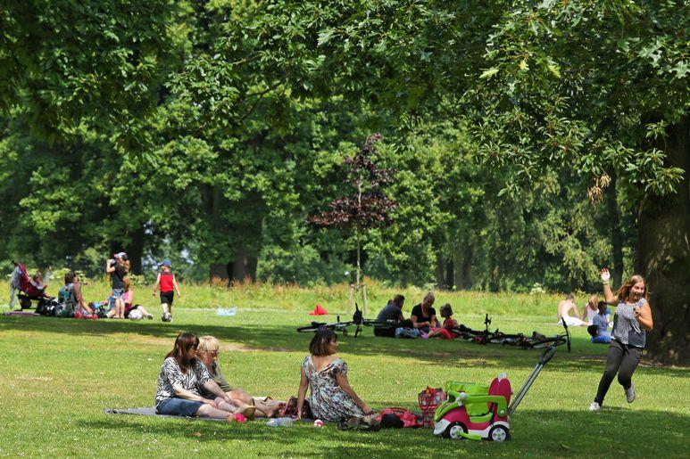 La Forêt de Montgeon, poumon vert de la ville, est l'endroit idéal pour se détendre et profiter de la nature